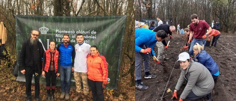 """""""Codrii de mâine"""". Principele Nicolae împreună cu sute de voluntari au plantat 12.000 de stejari în pădurea Albele"""