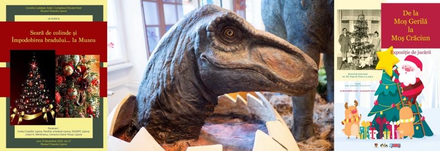 Sărbătorile de iarnă aduc vizitatorilor muzeului arădean surprize plăcute: expoziții și evenimente pentru copii!
