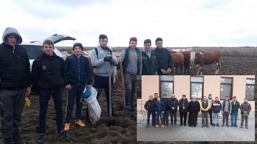 """Elevii Școlii """"ASTRA"""" au plantat peste 400 de sălcii la Secusigiu"""