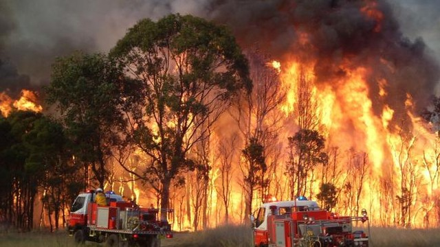 Stare de urgență în Australia. Orașe întregi au fost evacuate