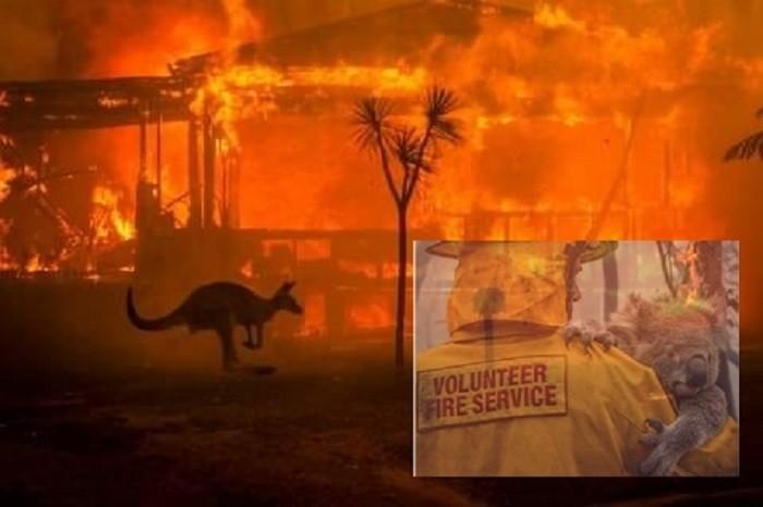 Green Report: Aproape 500 de milioane de animale au murit în incendiile din Australia