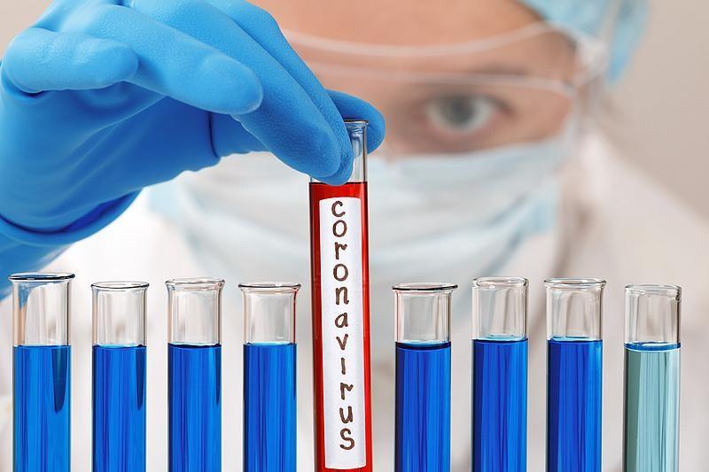 Coronavirus România, informații oficiale: Primul caz de infecție în București, al 12-lea din țară