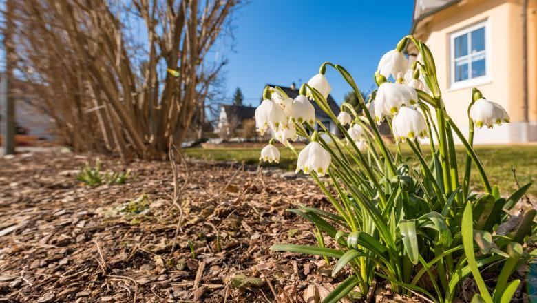 Martie 2020, printre cele mai calde luni de martie înregistrate vreodată