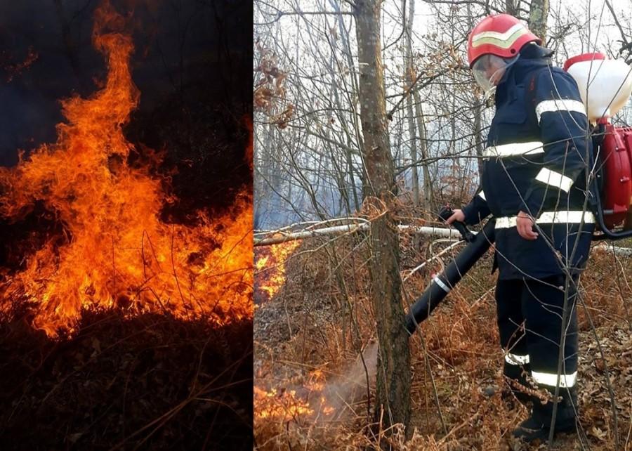 ISU Arad: Renunțați la curățarea pășunilor prin incendiere!