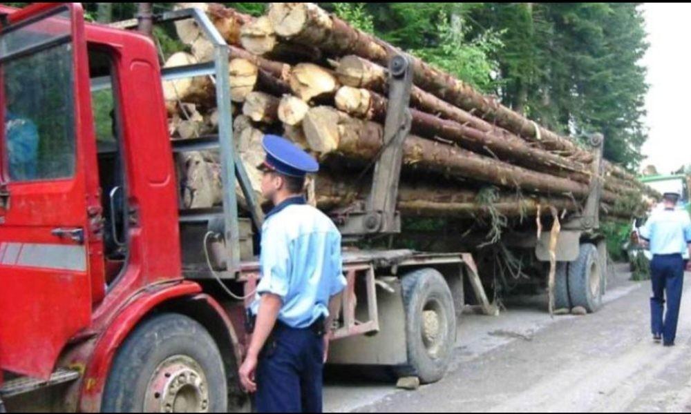 Amenzi de 415.000 de lei pentru transporturi ilegale de lemn, în luna aprilie