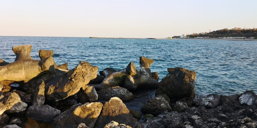 Marea Neagră și plajele de pe litoral, în plin proces de refacere. Delfinii vin tot mai aproape de mal