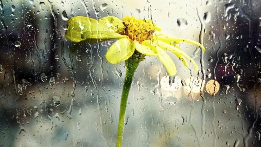 Vreme instabilă, cu ploi și temperaturi mai scăzute în următoarea perioadă