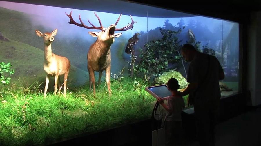 Muzeul Antipa se redeschide de Ziua Internaţională a Copilului