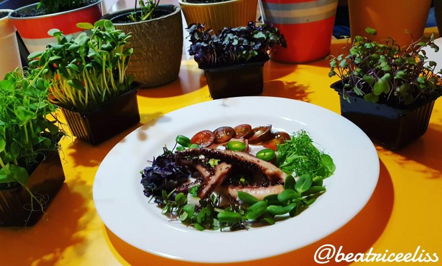 Din Bucătăria Lui Eliss: Tentacule de calmari cu salată de microplante