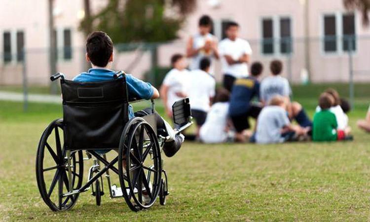 Legea privind protecţia şi promovarea drepturilor persoanelor cu handicap, promulgată de președinte