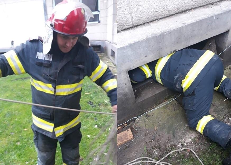 Orice viață contează! Pompierii din Ineu au salvat un cățel căzut într-un canal de ventilație
