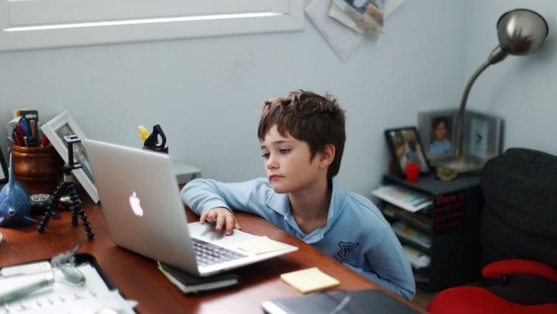 Academia Română: Educaţia online este o formă complementară educaţiei directe, în sala de clasă