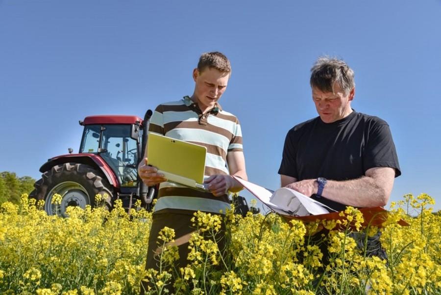 Recensământ agricol de probă în trei comune din Județul Arad