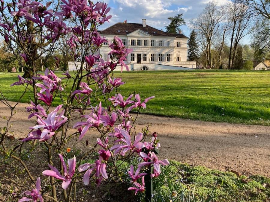 Imagini din Parcul Regal de la Săvârșin în Duminica Floriilor