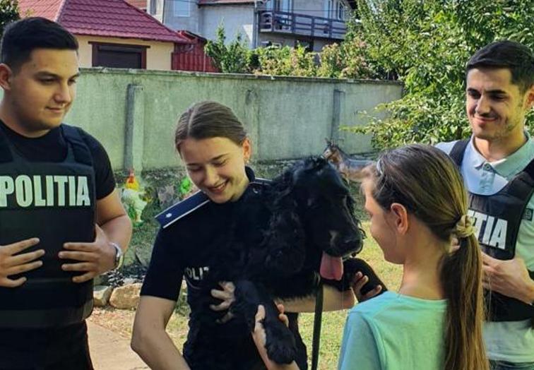 Poveste cu final fericit. Câine dispărut din Arad în urmă cu un an, găsit de Poliția Animalelor la Șicula