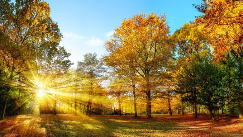 Toamna începe cu temperaturi mai scăzute decât cele specifice perioadei. Prognoza meteo pentru luna septembrie