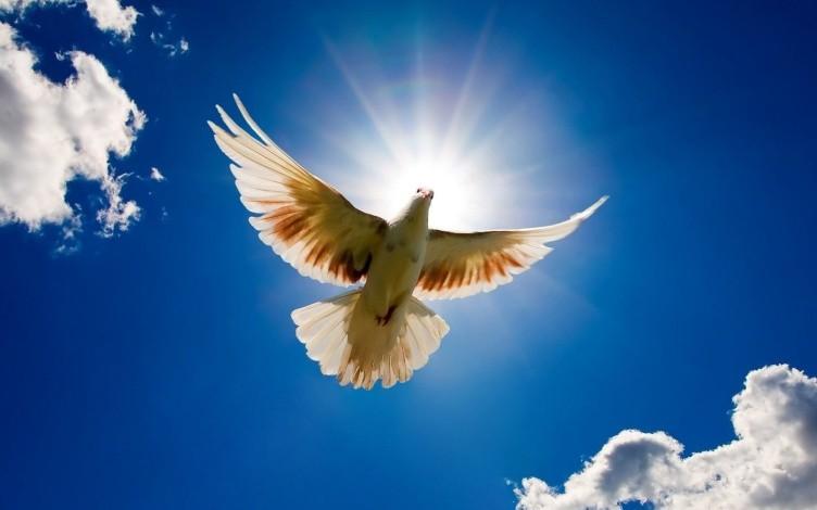 21 septembrie - Ziua internaţională a păcii