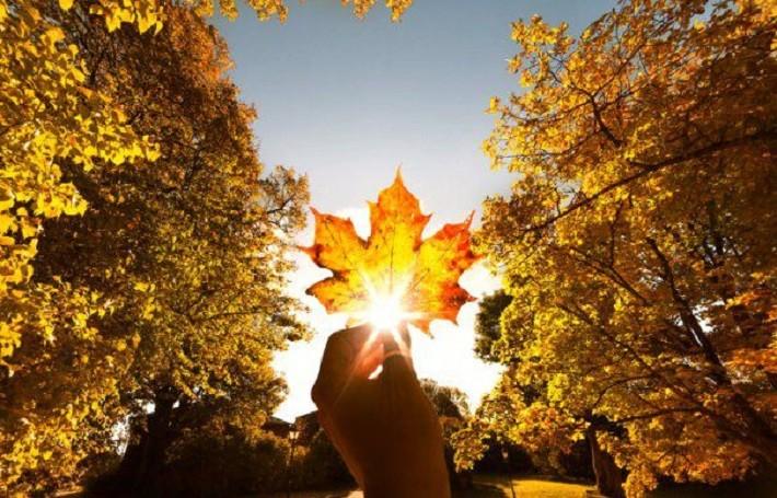 Vremea se încălzește în a doua parte a lunii octombrie. Prognoza meteo pentru următoarele săptămâni